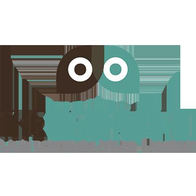 Logo The Visual Plan